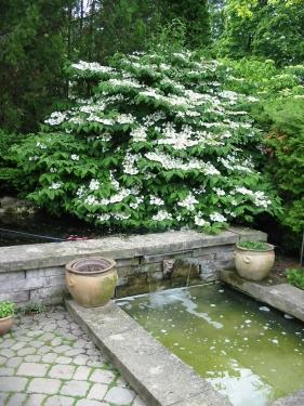 Stone garden pool