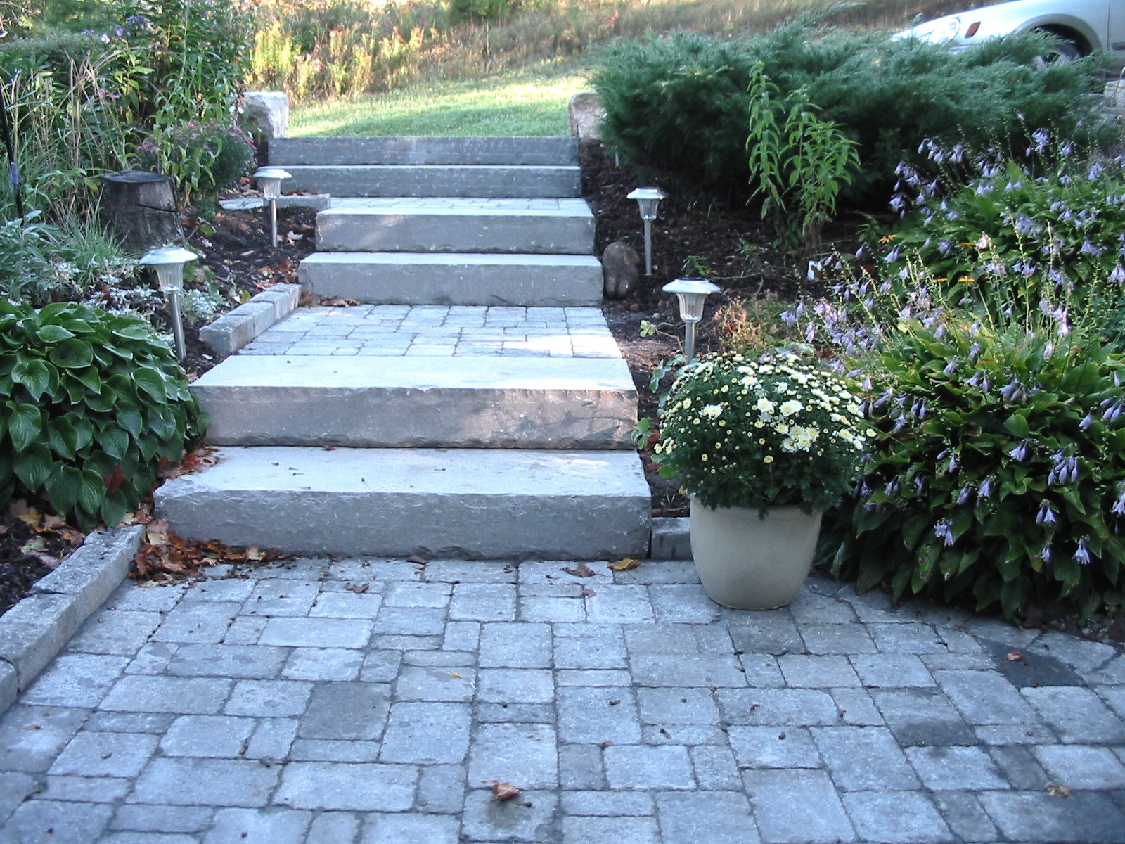 New solid limestone steps