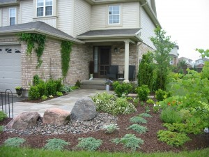Garden after landscape design project