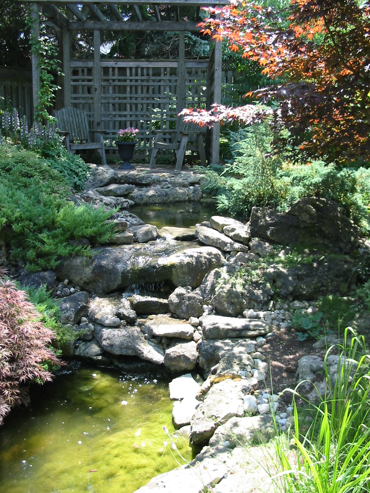Ponds And Waterfalls Robin Aggus Natural Landscaping